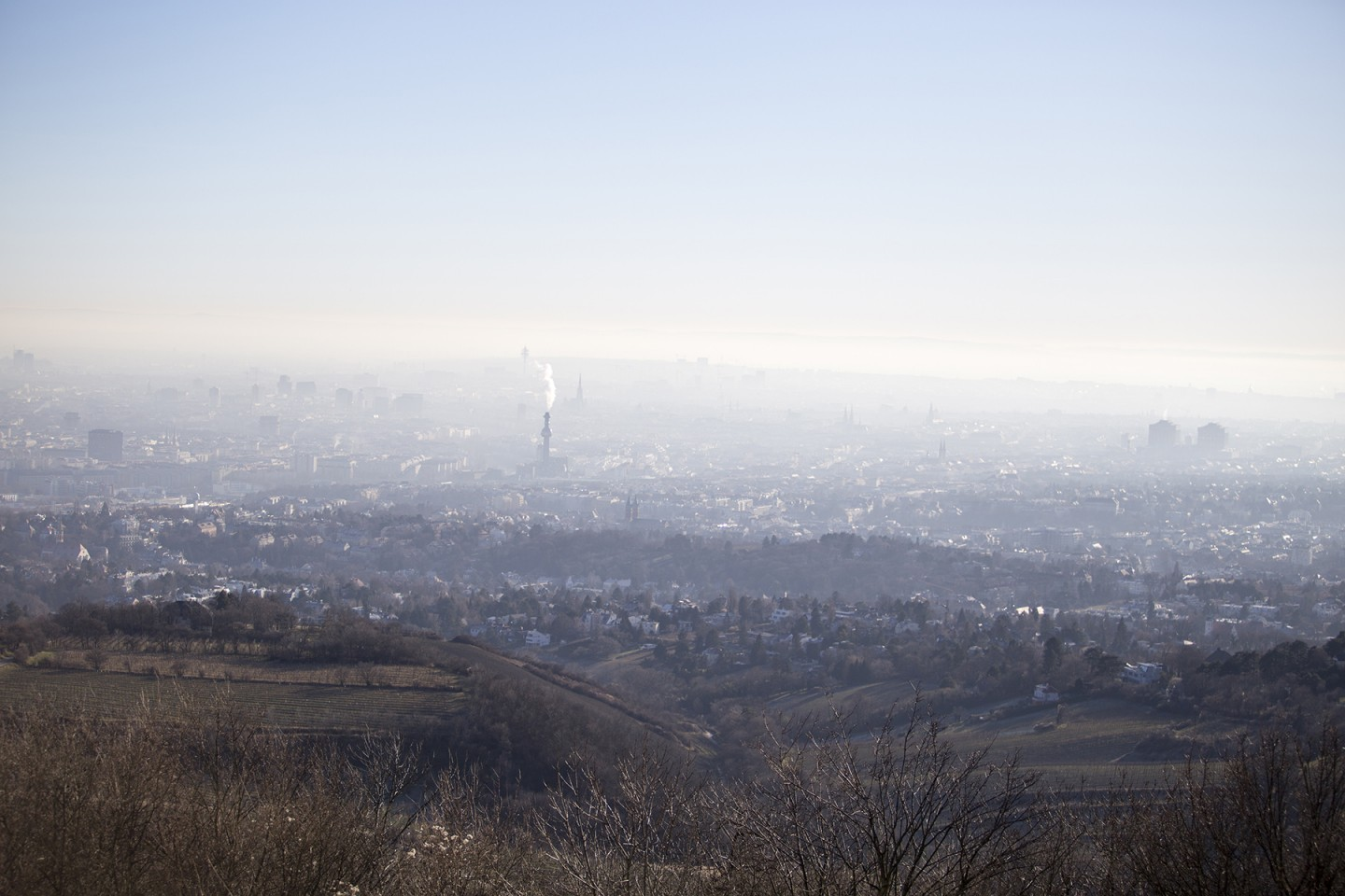 view from Mount Kahlenberg Vienna